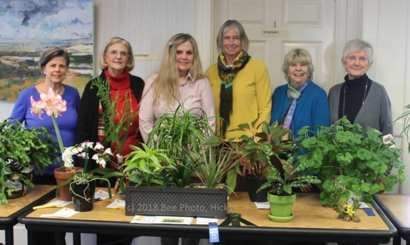 1-SH_Garden-Club-of-Newtown-CT-flower-show-recap-group-with-entries-WATERMARKED.jpg