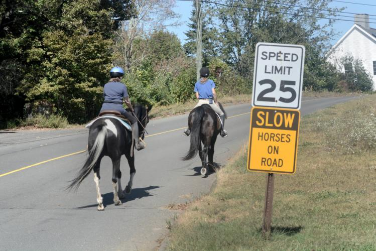 Barbara Gaydosh on Skye, left, and Brenda Majeski on Majic ride past a sign alerting drivers to slow down for horses along Huntingtown Road. (Bee Photo, Hutchison)