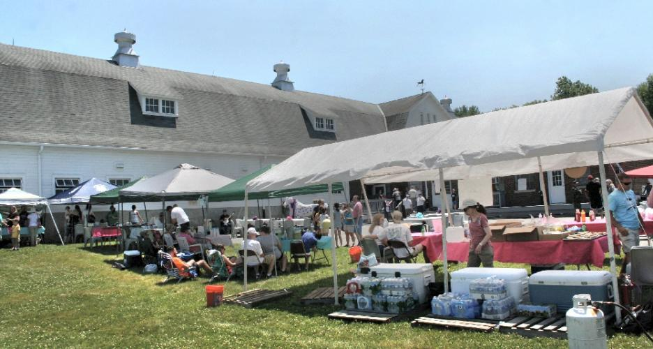 Exhibitors at the Pony Rides For Jessica Rekos event were positioned outside the main barn at the horse guard at Fairfield Hills.   (Bee Photo, Gorosko)
