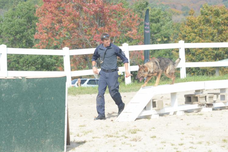 Jason Frey of the Clinton Police Department, and K-9 Sonny, go through the obstacle course. (Bee Photo, Hutchison)