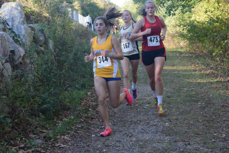 Lu Hage leads a pack of runners on the course. (Bee Photo, Hutchison)