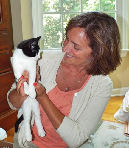 Newtown resident Angela Thill is a dedicated foster who has been volunteering with The Animal Center since 2014. Special needs kitten Lucky is her 24th foster. (Bee Photo, Silber)