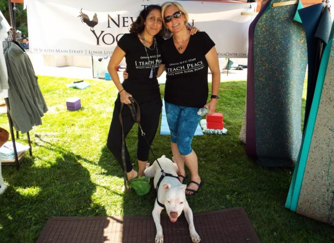 The Newtown Yoga Festival featured many local businesses in the health and wellness world, including the Newtown Yoga Center. Pictured from left is Newtown Yoga Center owner Aline Marie with her dog, Truth, and yoga instructor Kim Bassett. (Bee…