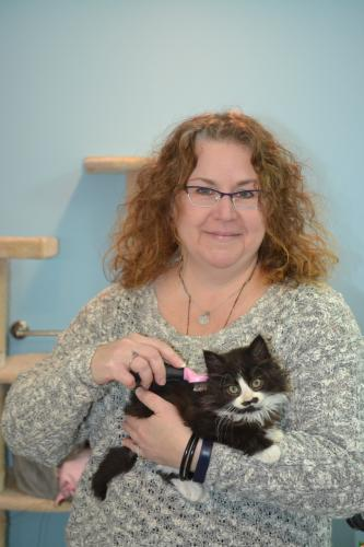 Kitten Associates President Robin Olson holds new rescue Pistachio, who was found at a construction site in town. Since coming to Kitten Associates, Pistachio has gained a large following on social media and has inspired Ms Olson to continue taking…