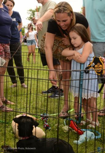 CVH-dog-adoption-June-2018-Camila-Chloe-Teixeira-WATERMARKED.jpg