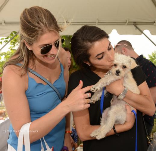 CVH-dog-adoption-Weissman-Klein-with-Snoopy-WATERMARKED.jpg