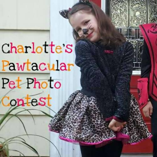 The animal-loving memory of the late Charlotte Bacon is being honored in a pet photo contest this month by The CHB Foundation.  (photo courtesy The CHB Foundation)