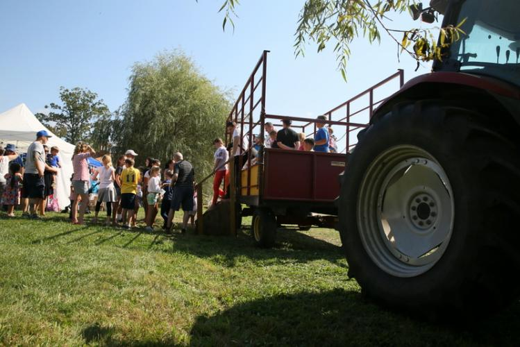 Festival guests exit from a tractor-pulled hay ride after a spin around Paproski's Castle Hill Farm. (Bee Photo, Hallabeck)