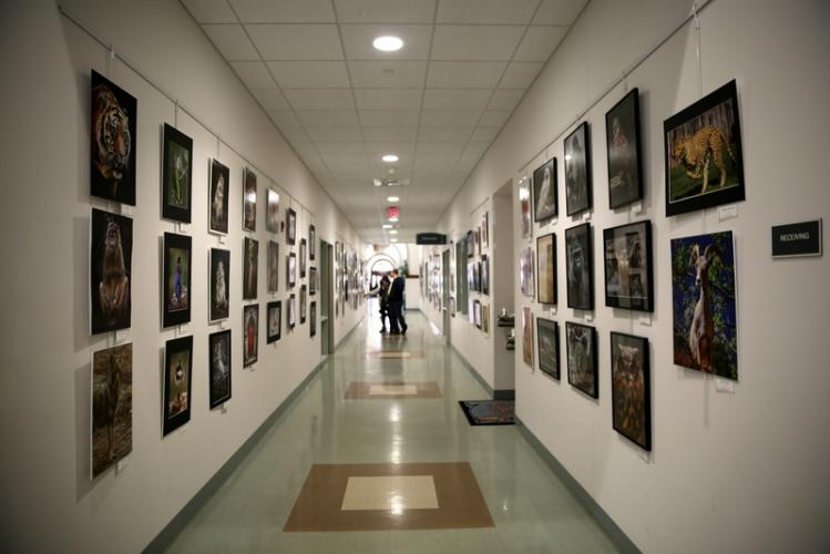 "People browsed the large display of photographs by Newtown residents and photographers Chane and Rhonda Cullens during the opening reception for the pair's ""Capturing Newtown and Our World,"" celebrated at Newtown Municipal Center on April 8. (Bee…"