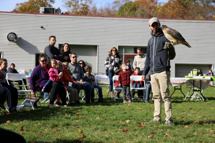 Sharon Audubon Center volunteer David Petagine introduced people at the Fraser Woods Montessori School Fall Family Festival to a red-tailed hawk during a demonstration. (Bee Photo, Hallabeck)