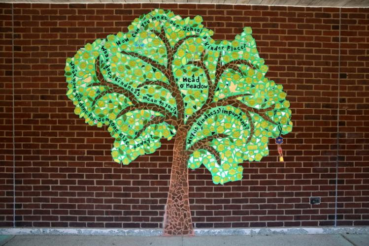 Head O' Meadow Elementary School's Ben's Bells mural was installed and on view at the school by May 24. (Bee Photo, Hallabeck)