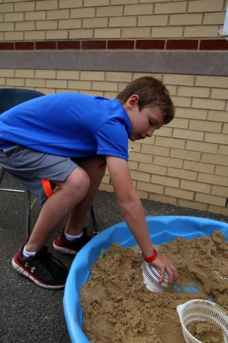 """Middle Gate second grader Andrew Allred searches for """"treasure"""" in a sandbox station at the Middle Gate Madness event on June 22. (Bee Photo, Hallabeck)"""