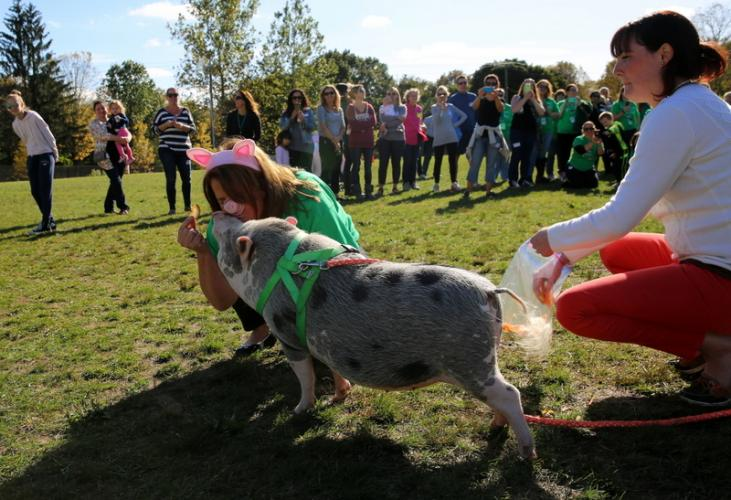 Sandy Hook Elementary School Principal Kathy Gombos shared a kiss with Hercules, a pig owned by Kristen Olyha, right, to celebrate the school's PTA raising more than $10,000 to support education at the school through its first Annual Walk-A-Thon…