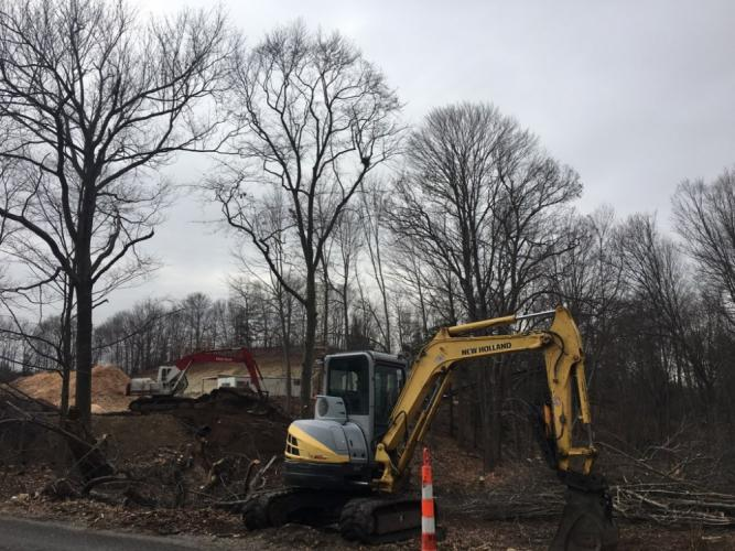 Machinery on Wednesday, February 7, continued clearing a site at the top of Toddy Hill Road as part of a project to reroute the road's intersection to Berkshire Road (State Route 34). An old oak tree, which came down Friday, February 9, stood in the…