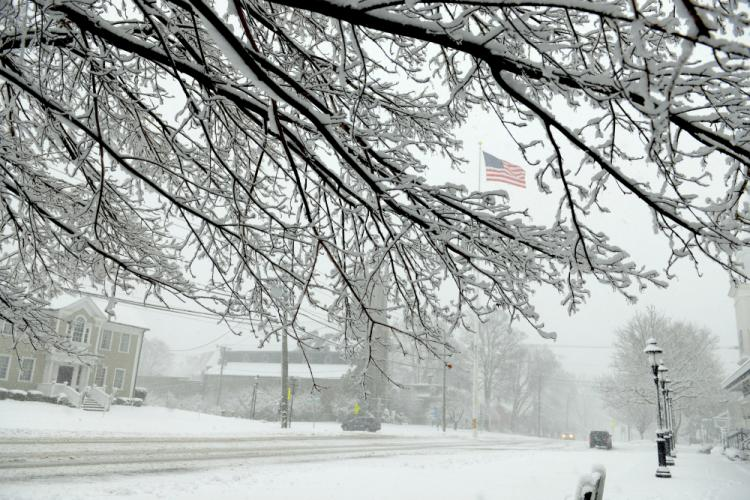 From between snow-covered limbs, the winter flag atop the town's landmark Main Street flagpole is seen whipping as stormy winds blew through Newtown Wednesday.  (Bee Photos, Bobowick)