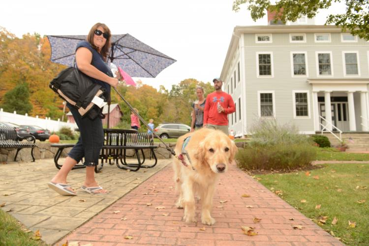 Newtown Strong Therapy Dog Koda walks with Liz Luzietti as they greet residents out for the 7th Annual Passport to Sandy Hook on Saturday, October 7.--Bee Photo, Bobowick