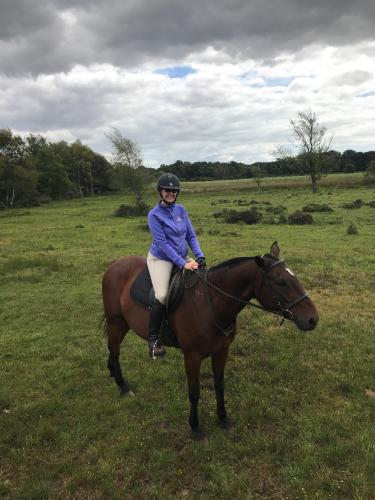 Lisa Unleashed author Lisa Peterson astride her fearless polo pony, Dom.