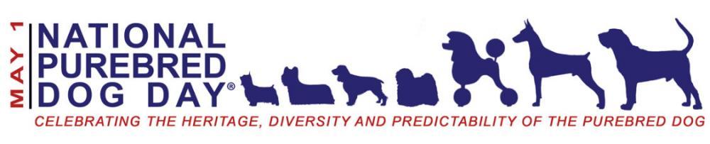 Lisa-Unleashed-National-Purebred-Dog-Day.jpg