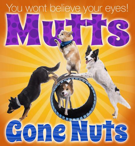 Mutts-Gone-Nuts-logo.jpg