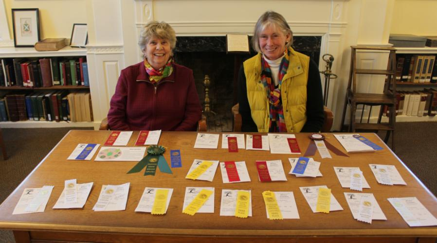 Newtown-residents-sending-entries-to-CT-Flower-Garden-Show-Townsend-Osborne-2017-Bee-photo.jpg