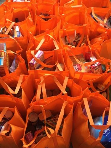 The One Day 2 Missions program that local teen Hannah Groonell started last year continues to collect donations for FAITH Food Pantry in its orange reusable bags. (photo courtesy of Beth Groonell)