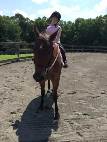 Sunny Brook Farm camper Olivia Seale rode the horse Penny during this outing.