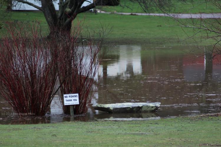 SH_Monday-rain-south-Ram-Pasture-near-bench-sign.jpg