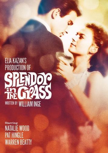 Splendor-in-the-Grass-movie-poster.jpg