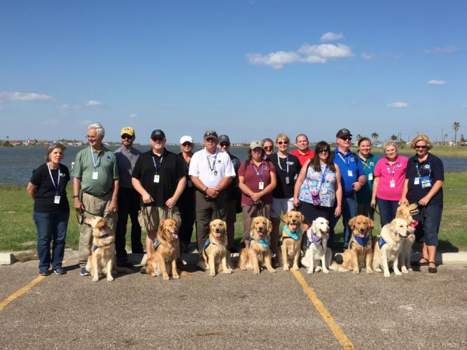 During the first deployment to Texas in the wake of Hurricane Harvey, 30 trained Lutheran Church Charities handlers and 15 comfort dogs, some pictured here, helped Texans heal. (Ken Fay photo)