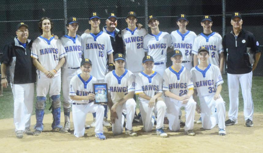 The Hammerin' Hawgs earned second place in the 14U Babe Ruth State Tournament. (Bee Photo, Hutchison)