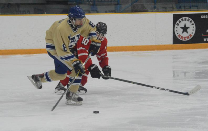Dillon Larkin notched his first varsity goal in a 9-1 win. (Bee Photo, Hutchison)