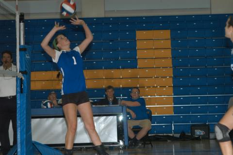 Mylis Post sets the ball for a teammate during Newtown's 3-0 triumph over Notre Dame.