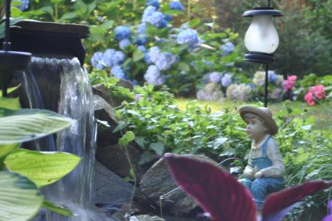 Ms Lincoln gently teases her grandson that the fishing boy statue perched by the waterfall is him. Hydrangea bordering the yard, in the background, came from plants grown by her father, who has passed away.