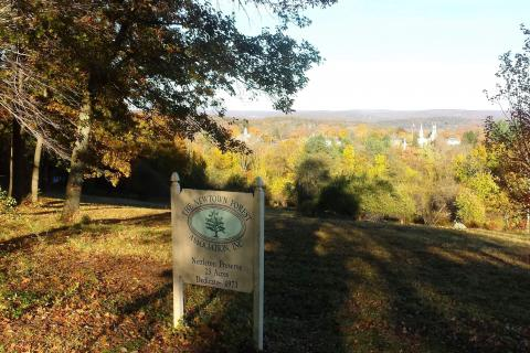 Newtown Forest Association will begin work shortly to enhance its 26-acre Nettleton Preserve, one of the town's most well-known properties. The project will include the addition of flowering fruit trees to complement those planted on the…