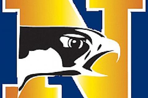 NHS_Nighthawk_logo.jpg