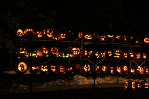 The pumpkins received for The Great Pumpkin Challenge are illuminated each night they are displayed, creating a beautiful presentation for anyone walking or driving past the Mackenzie residence on Main Street.
