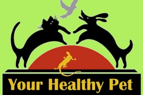 Your-Healthy-Pet.jpg