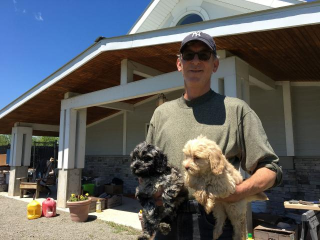 Owner Says Hudson Labradoodles Clears Inspection Hudson