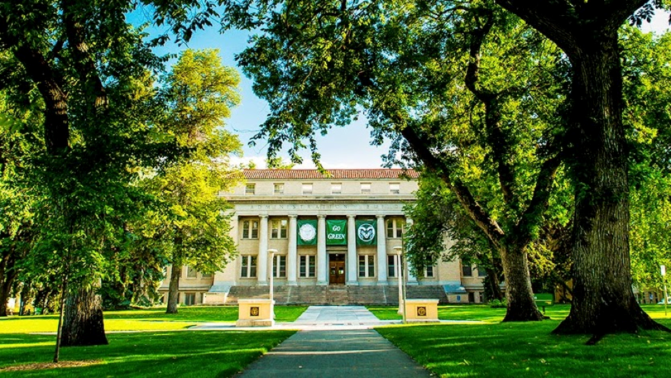 colorado state university essay requirements College admissions in colorado colorado's public four-year colleges and universities use admission standards approved by the colorado commission on.