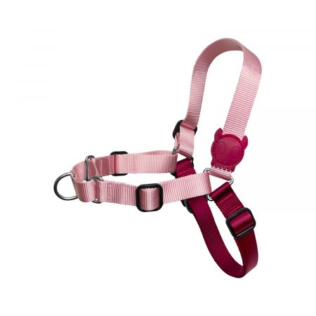 ZeeDog Blink Soft-Walk Harness