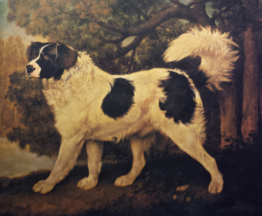 Museum Dogs - Dogs in the National Gallery of Art, Washington D.C., (mostly)