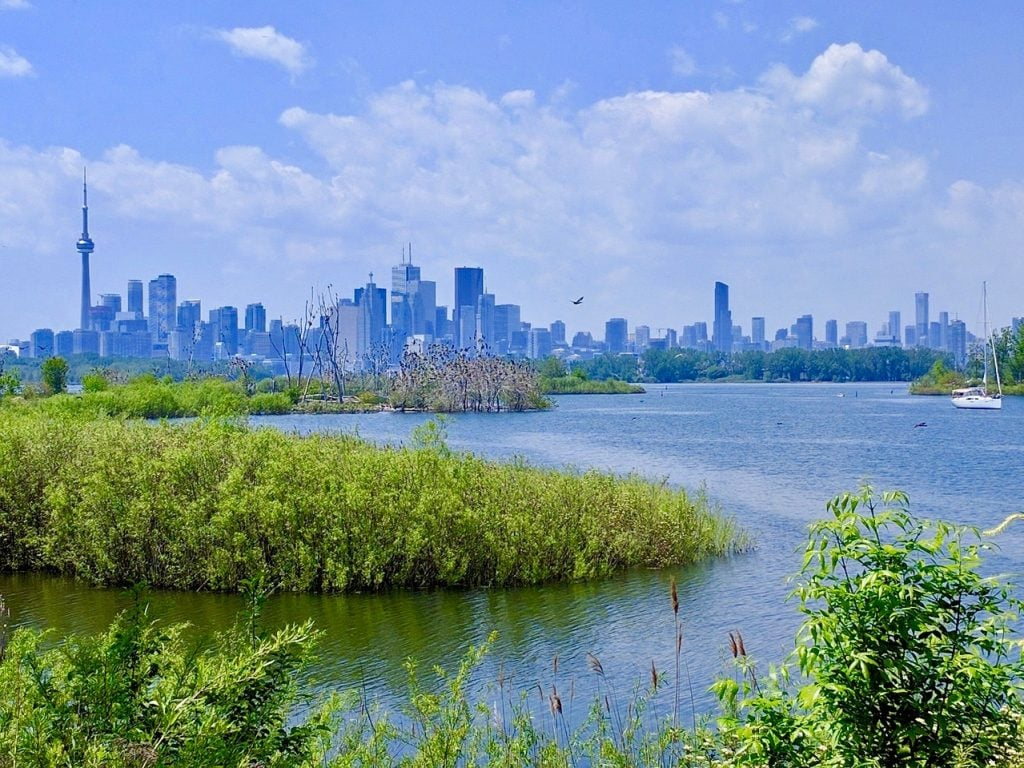 Canada for Kids: View from Tony Thompson Park