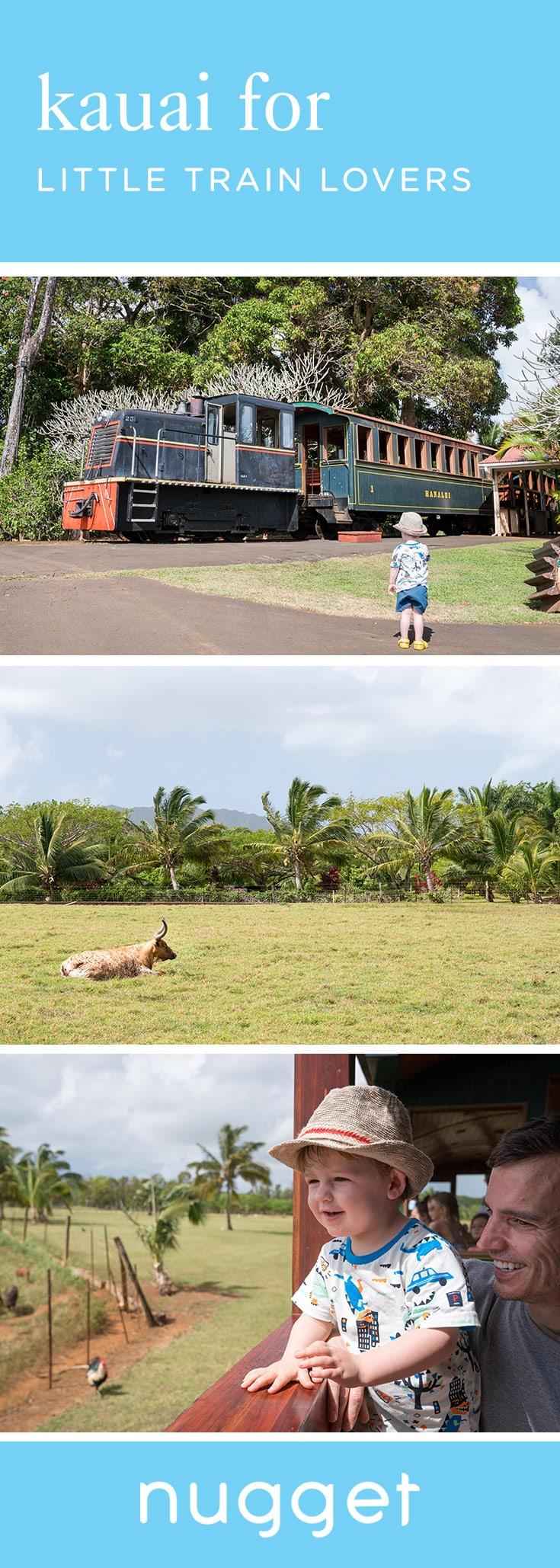 Kauai for Train Lovers