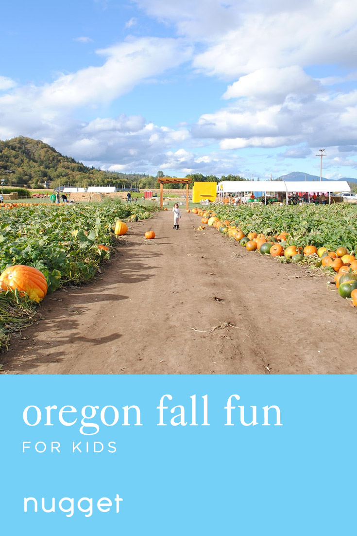 Fall Fun for Kids: Zip Lining, Pumpkin Patch and Pizza