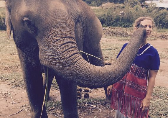 Elephant Kisses and More in Chiang Mai