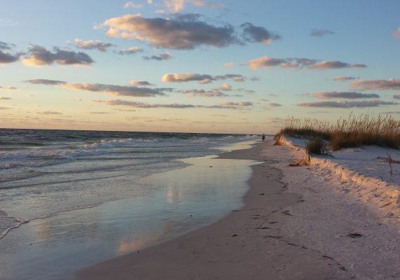 A Perfect Day of Anna Maria Island Beach Activities