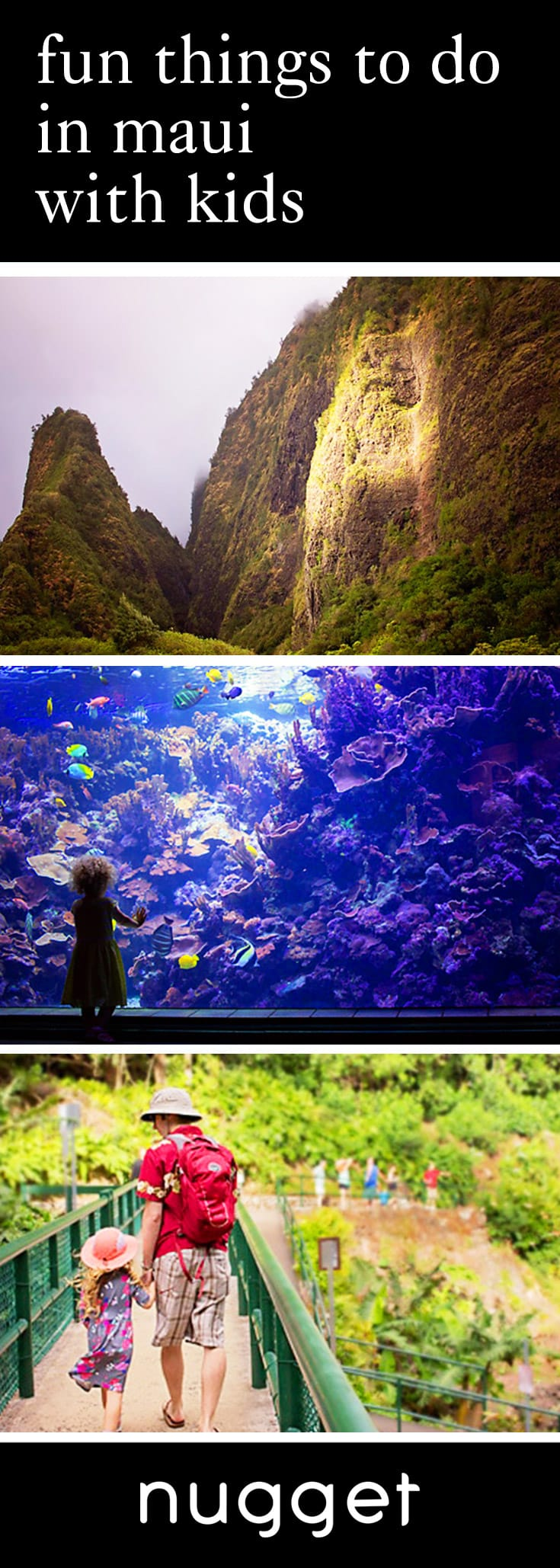 Maui With Kids: Maui Ocean Center and Iao Valley Hike