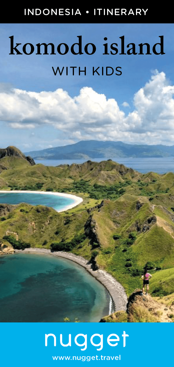 Komodo Island: Dragons and Pink Beaches in Indonesia
