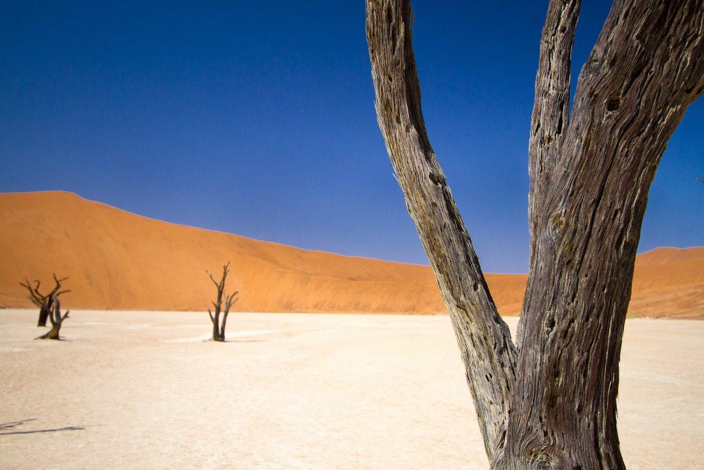 African Safari Holidays: Deadvlei