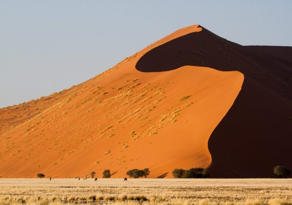 Africa for Kids: Living Next to the Namib Desert